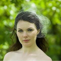 classic birdcage veil