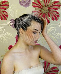 classic birdcage veil by lily bella