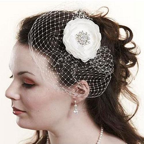 mini birdcage wedding veil by lily bella
